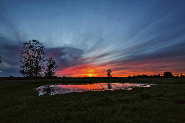 Wall Art - Photograph - Pond In The Pasture by Matt Molloy