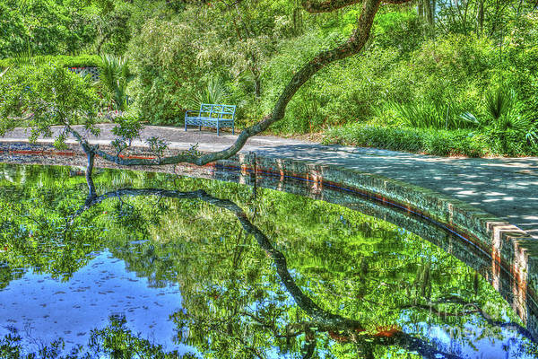 Photograph - Pond Reflections by Dale Powell