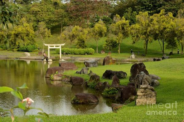 Pond Rocks Grass And Japanese Arch Singapore Art Print