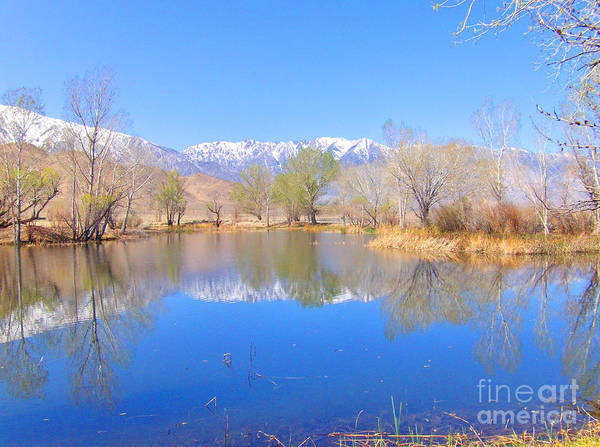 Bishop Hill Photograph - Pond Water by Marilyn Diaz