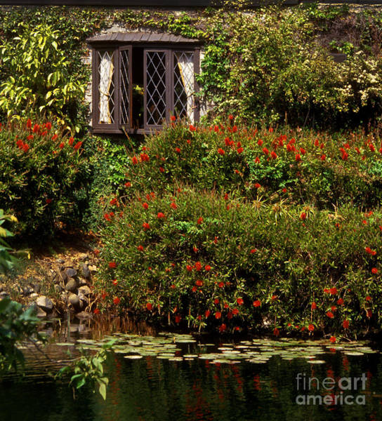 Photograph - Pond Window by Paul W Faust -  Impressions of Light