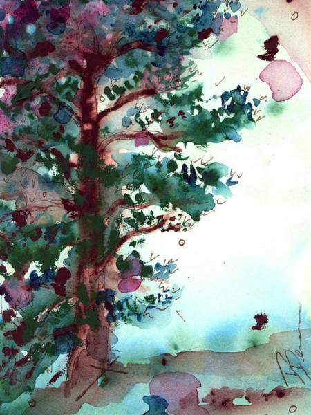 Painting - Ponderosa Pine by Dawn Derman