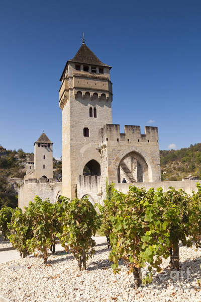 Wall Art - Photograph - Pont Valentre Cahors Midi-pyrenees France by Colin and Linda McKie