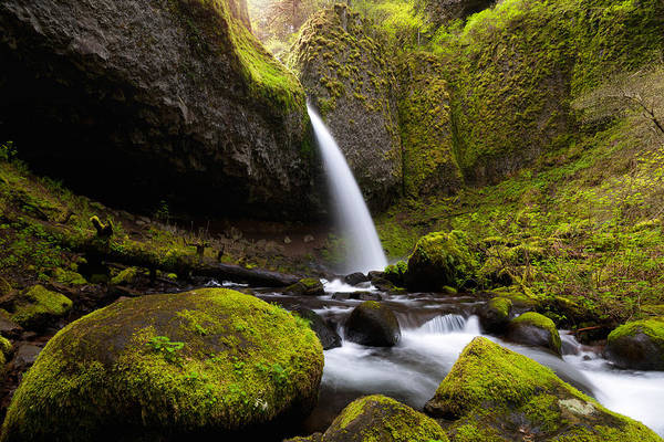 Photograph - Ponytail Falls by Andrew Kumler
