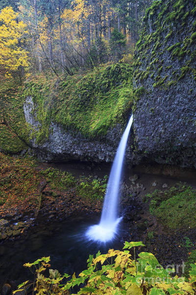 Photograph - Ponytail Falls by Mark Kiver