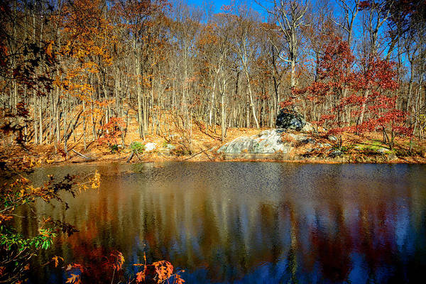 Wall Art - Photograph - Pool Hollow by Jim DeLillo
