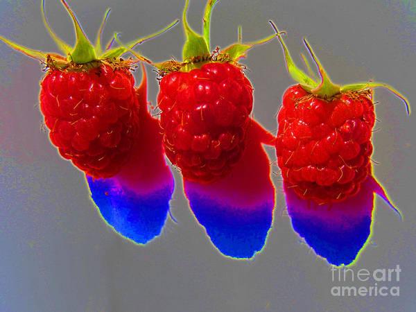 Wall Art - Photograph - Pop Art Raspberries by Tina M Wenger