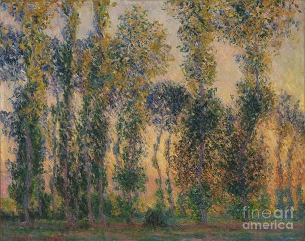 Poplar Painting - Poplars At Giverny Sunris by Claude Monet
