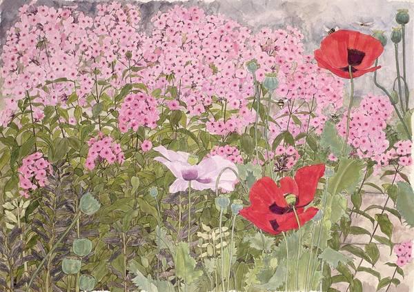 Bee Photograph - Poppies And Phlox by Linda Benton