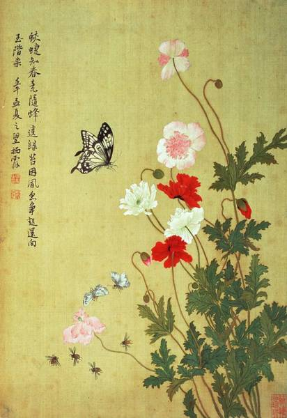 Inscription Photograph - Poppies, Butterflies And Bees Ink And Colour On Silk by Ma Yuanyu