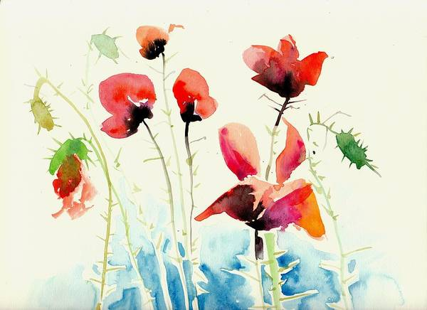 Pavot Wall Art - Painting - Poppies Field Poppy Watercolor by Tiberiu Soos