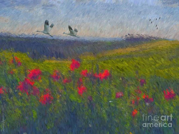 Poppies Digital Art - Poppies Of Tuscany by Lianne Schneider