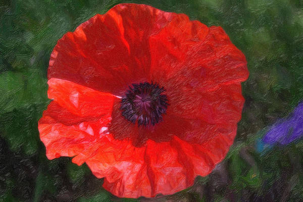 Painting - Poppy 2075 by Dean Wittle