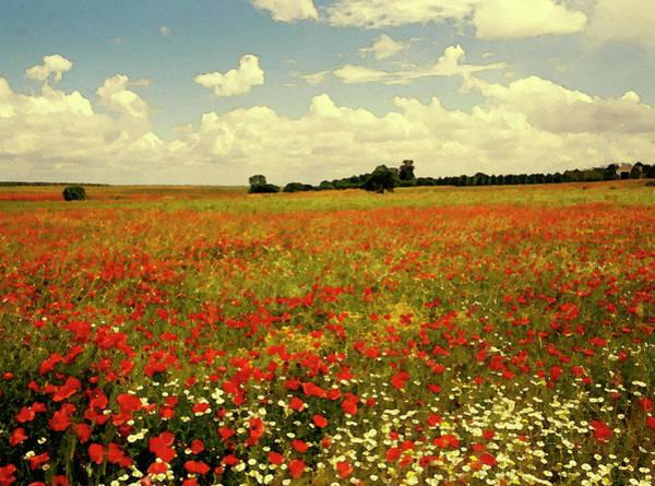 Poppies Digital Art - Poppy Field by Images Etc Ltd