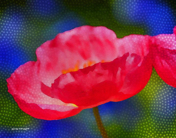 Moon Flower Photograph - Poppy Series - Touch by Moon Stumpp