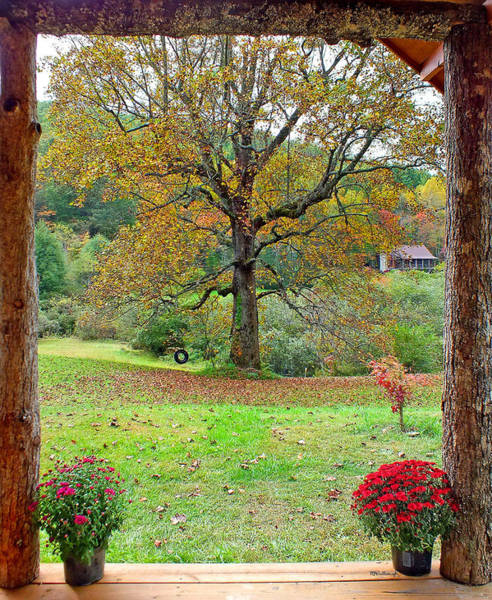Photograph - Porch View Of Poplar Tree by Duane McCullough