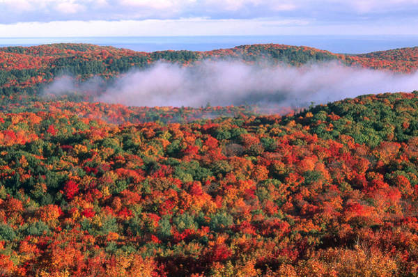 Acer Saccharum Photograph - Porcupine Mountains, Michigan by Jeffrey Lepore