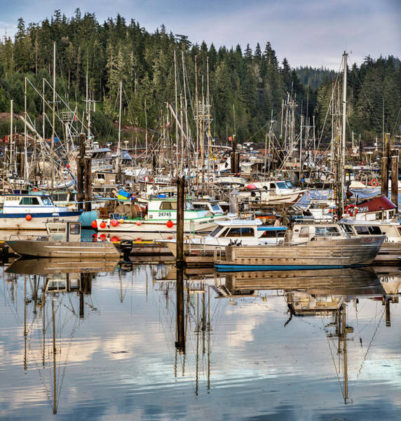 Vancouver Island Photograph - Port Hardy, Vancouver Island, British by Witold Skrypczak