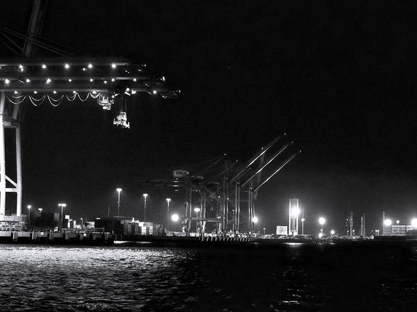 Photograph - Port Of Long Beach Comes Alive by Denise Dube