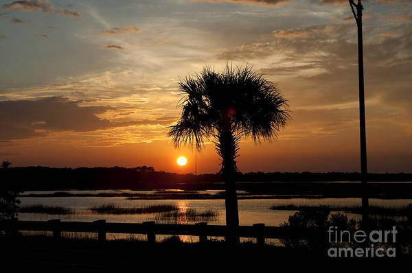Photograph - Port Royal Sunset by Scott Hansen