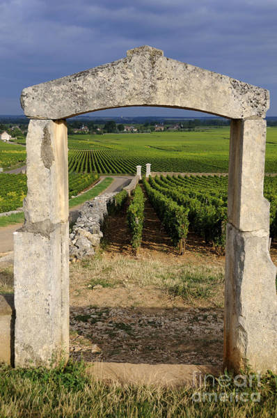 Village Gate Photograph - Portal  Of Vineyard.burgundy. France by Bernard Jaubert