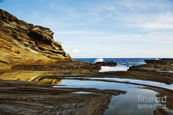 Photograph - Portlock Coastal Landscape by Charmian Vistaunet