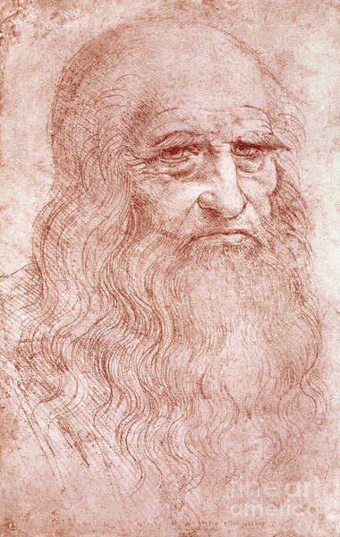 Crt Painting - Portrait Of A Bearded Man by Leonardo da Vinci