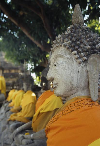 Photograph - Portrait Of A Buddha by Maria Heyens