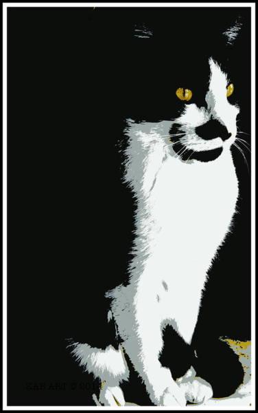 Posterize Photograph - Portrait Of A Cat by Kathy Barney