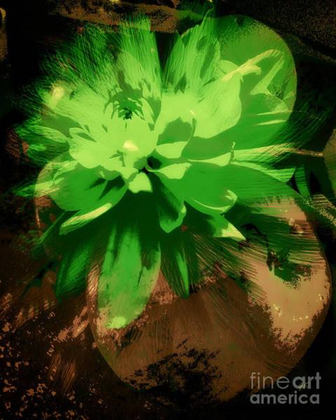Photograph - Portrait Of A Flower by Gerlinde Keating - Galleria GK Keating Associates Inc