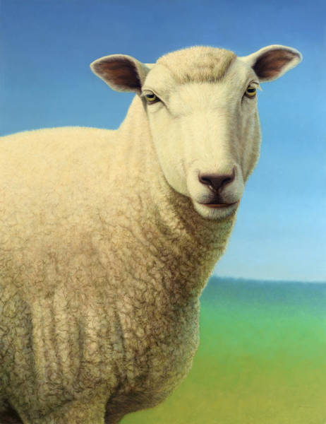 Johnson Wall Art - Painting - Portrait Of A Sheep by James W Johnson