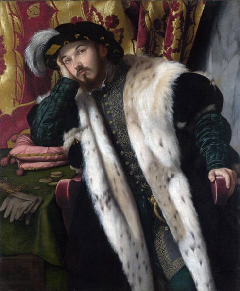 Ermine Wall Art - Photograph - Portrait Of A Young Man, C.1542 Oil On Canvas by Alessandro Bonvicino Moretto