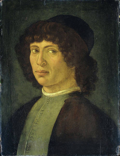 Wall Art - Drawing - Portrait Of A Young Man, Manner Of Filippino Lippi by Litz Collection
