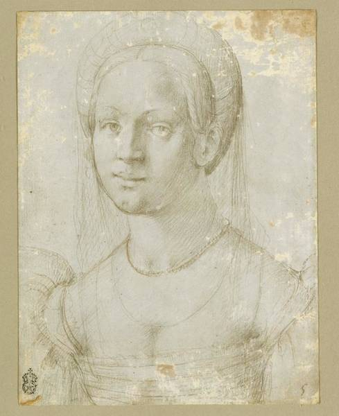Pier Drawing - Portrait Of A Young Woman by Attributed to Pier Francesco Foschi