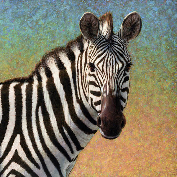 Wall Art - Painting - Portrait Of A Zebra - Square by James W Johnson