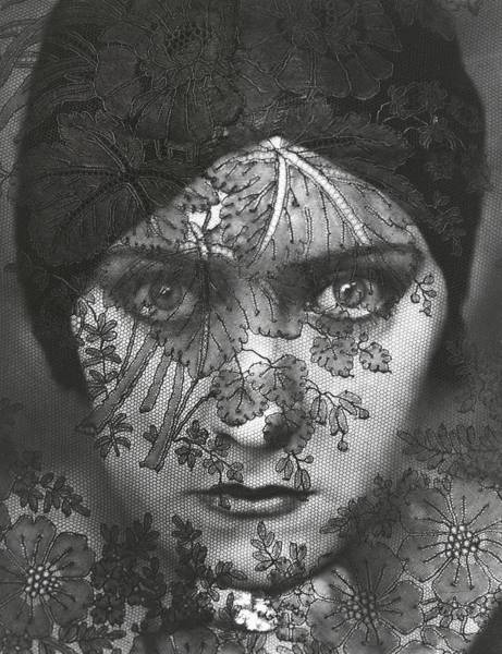 Floral Photograph - Portrait Of Gloria Swanson Behind Lace by Edward Steichen