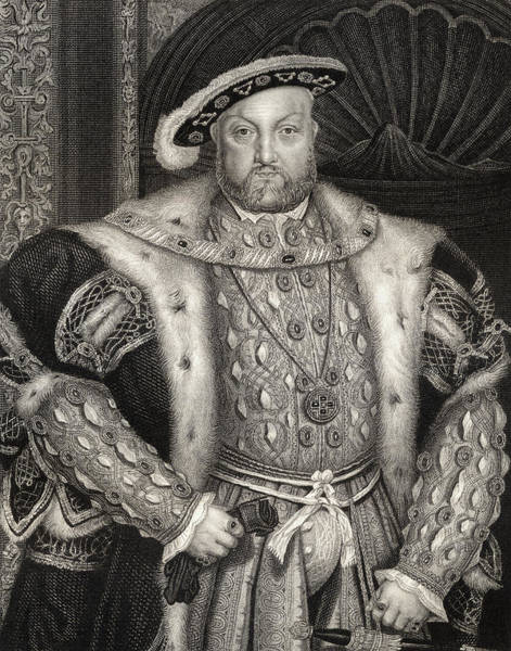 Fur Coat Drawing - Portrait Of King Henry Viii  by Hans Holbein the Younger