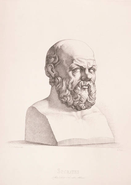 Ancient Drawing - Portrait Of Socrates by CC Perkins