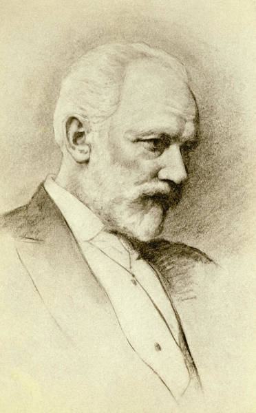 Wall Art - Drawing - Portrait Of The Composer Piotr Tchaikovsky by English School