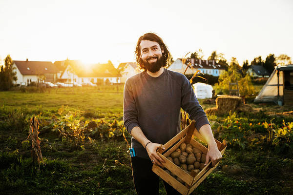 Portrait Of Urban Farmer Holding Crate Of Potatoes Art Print by Tom Werner