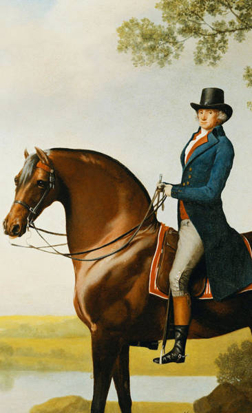 Outer Banks Painting - Portrait Of Warren Hastings Small Full Length On His Celebrated Arabian by George Stubbs