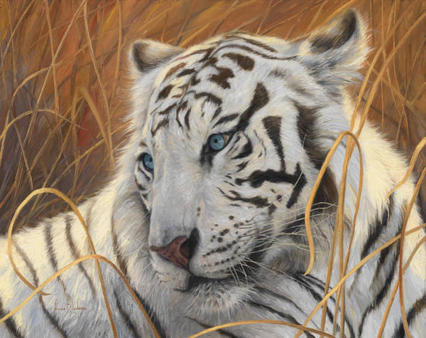 Wall Art - Painting - Portrait White Tiger 1 by Lucie Bilodeau
