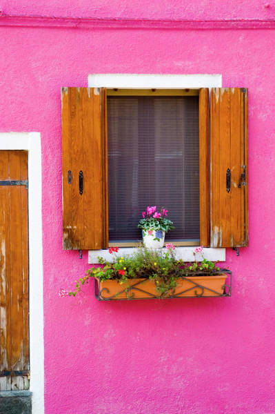 Wall Art - Photograph - Pot Plant And Vividly Painted Facade by Diana Mayfield