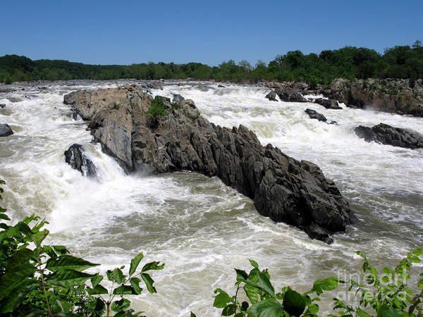 Photograph - Potomac Rapids by Olivier Le Queinec