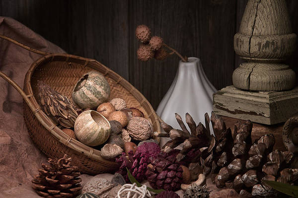 Pine Cones Photograph - Potpourri Still Life by Tom Mc Nemar