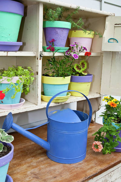Annual Photograph - Potting Bench With Containers by Richard and Susan Day