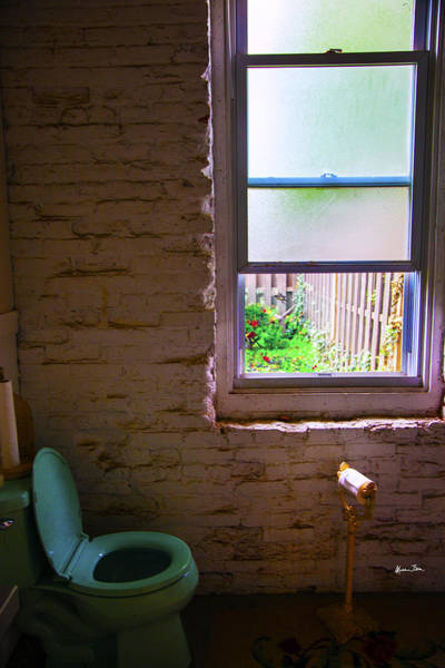 Toilet Paper Photograph - Potty With A View by Madeline Ellis