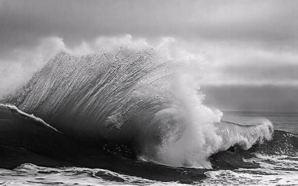 Power In The Wave Bw By Denise Dube Art Print