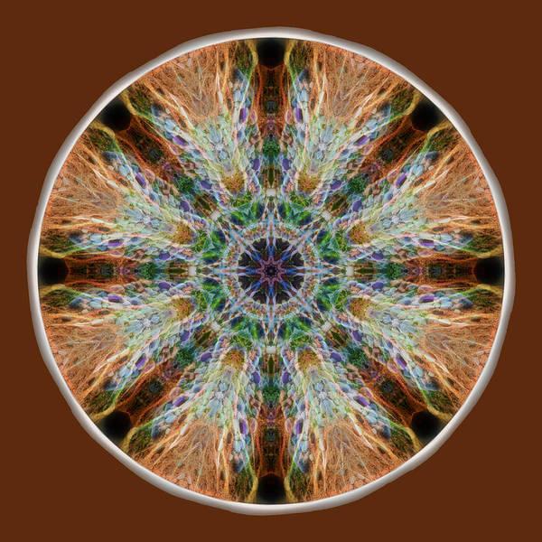 Digital Art - Power Of The Stones Mandala by Beth Sawickie