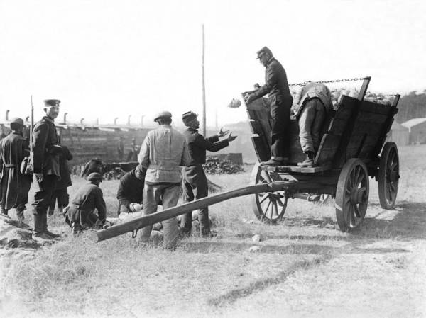 Wall Art - Photograph - Pows Unload Cabbages For Lunch by Underwood Archives